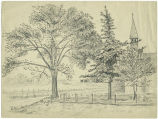 Sketch of Trees on a Country Road