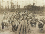 Sawdust Empire Workers
