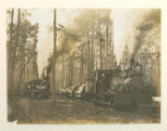 Logging Locomotives