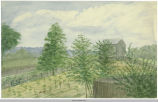 Water Color of Farmland