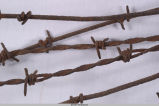 Barbed wire - German World War I
