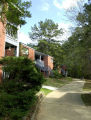 University Woods Apartments